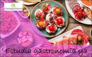 Estudia Gastronomía Ya
